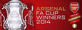 201314赛季足总杯冠军